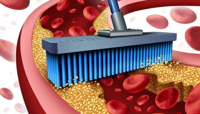 5 Lifestyle Strategies to Improve & Protect Vascular Health